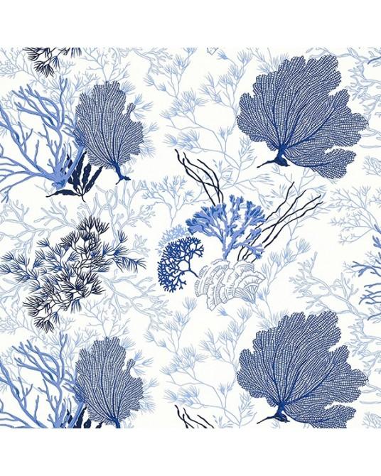 Molokini Blue