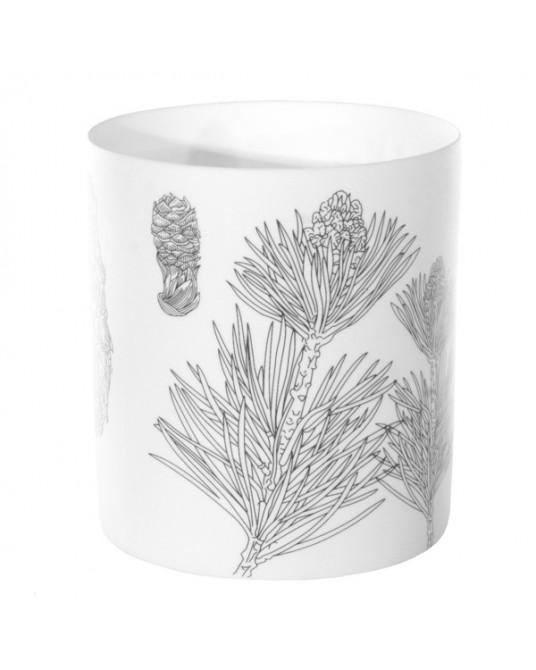 Copo T-light Pine Draw