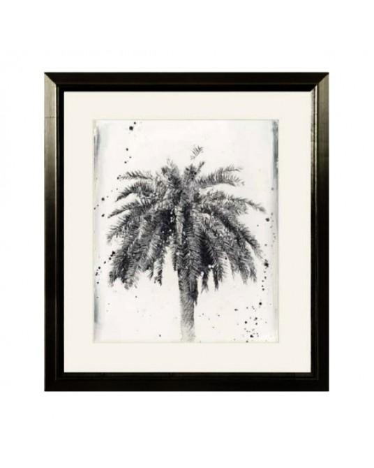 Frame Dream Palm Black