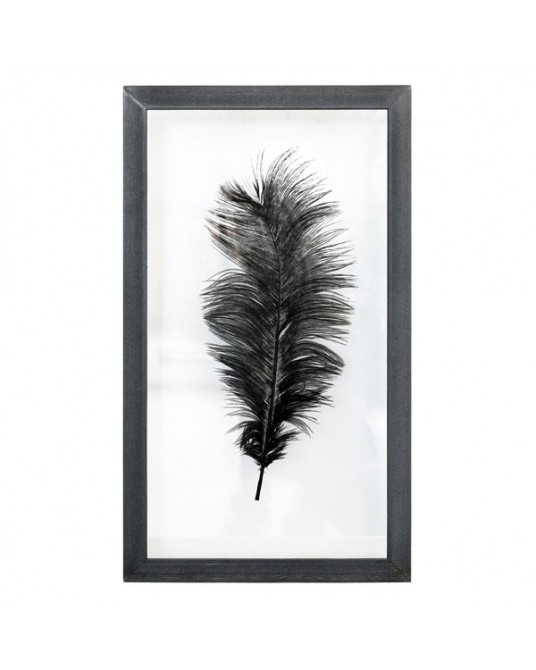 Quadro Ostrich Feather L