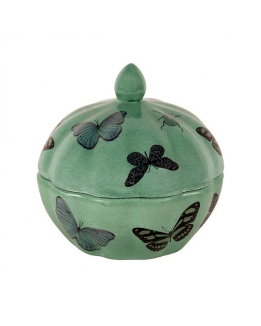 Box Butterfly Green
