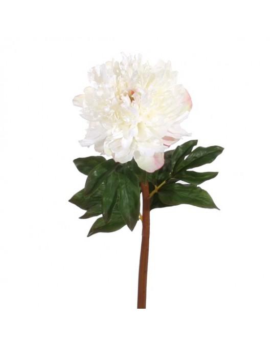 Peonia Branco 72cm