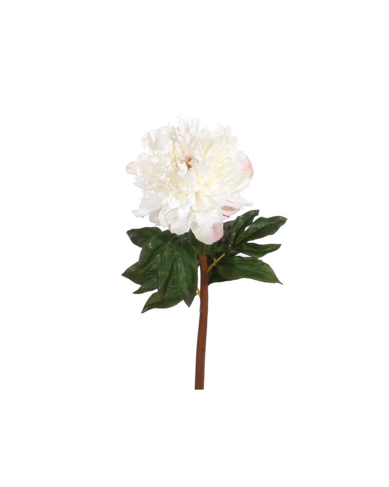 Ramo de Hortênsia Branco