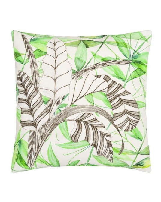 Palme Botanique Emerald