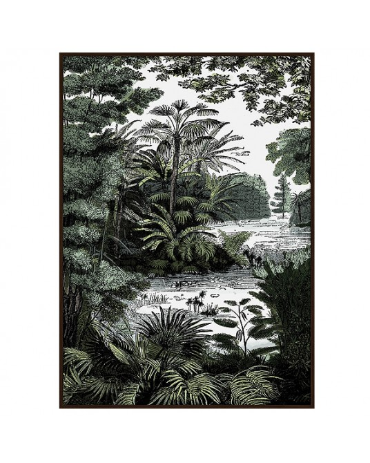 Canva Tropical Forest