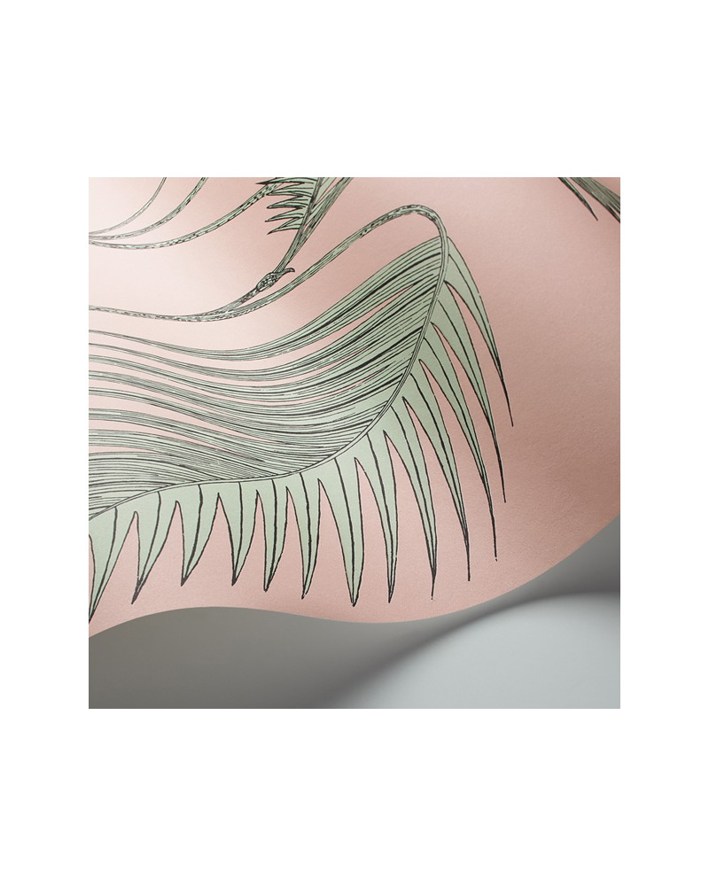 Papel de Parede Palm Leaves Pink