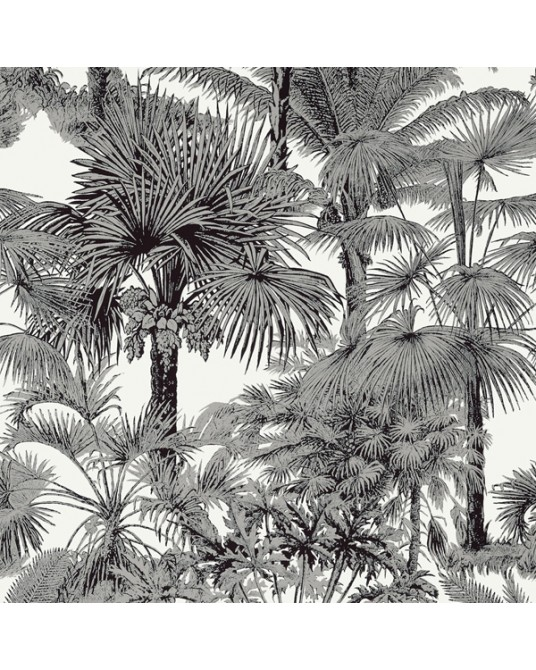 Wallpaper Palm Botanical Black