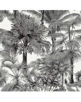 Papel de Parede Palm Botanical Black