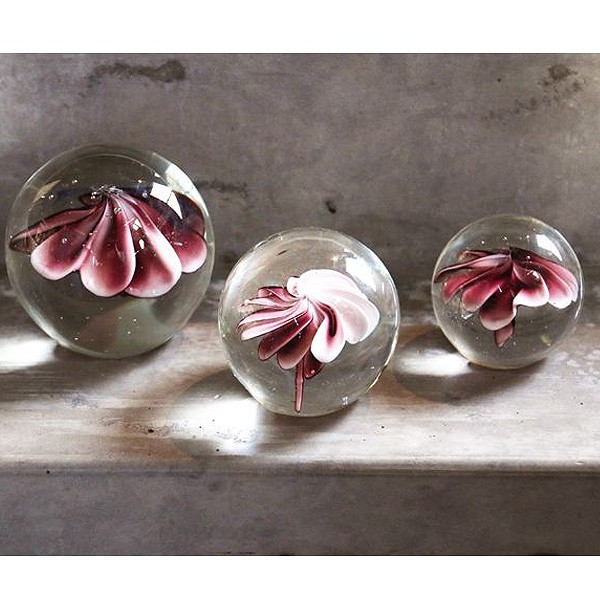 Pisa Papeis Flower Pink