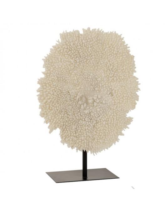 Coral em Pedestal