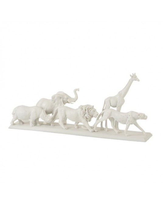 White Jungle Animals