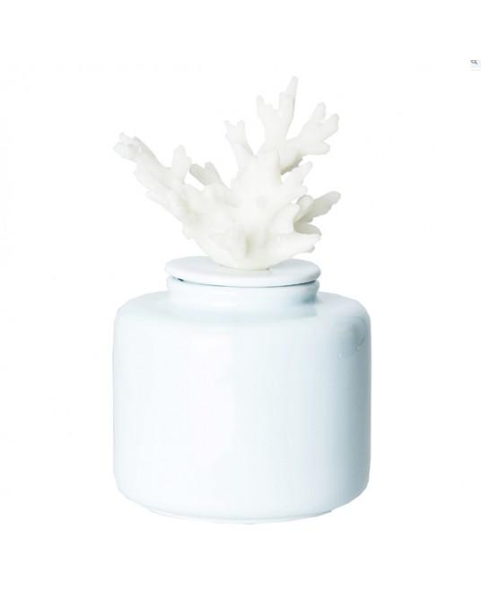 Caixa Apo Coral Branco