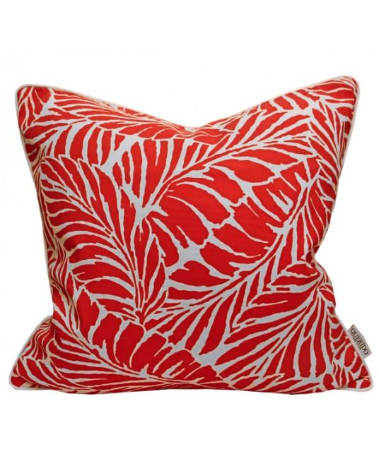 Pillow Levu coral