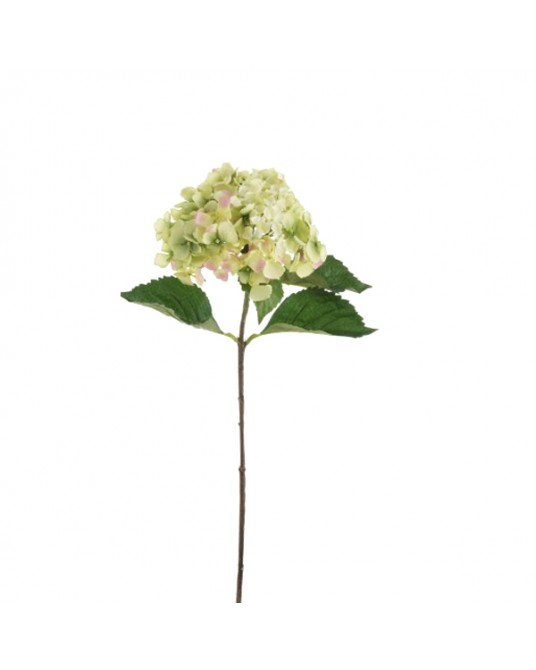 Light Green Hydrangea 65 cm