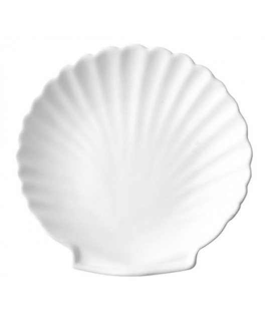 White Shell Plate M
