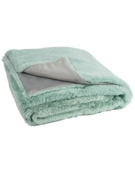 Mint Cutie Blanket