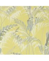 Papel de Parede Palm House