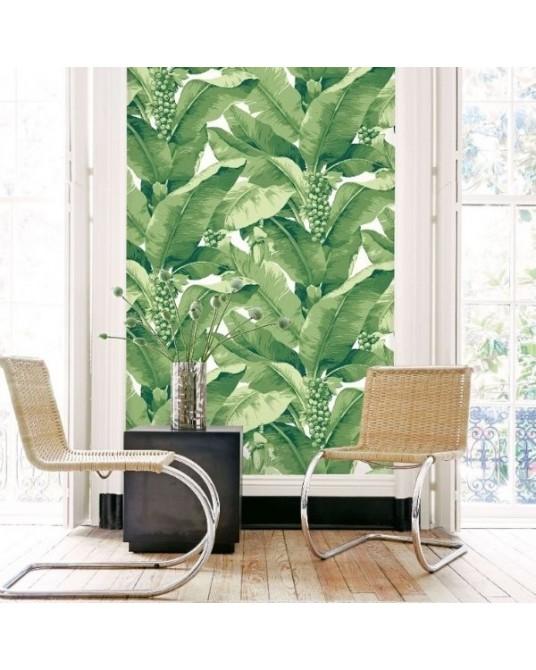 Wallpaper Paradisio Palm