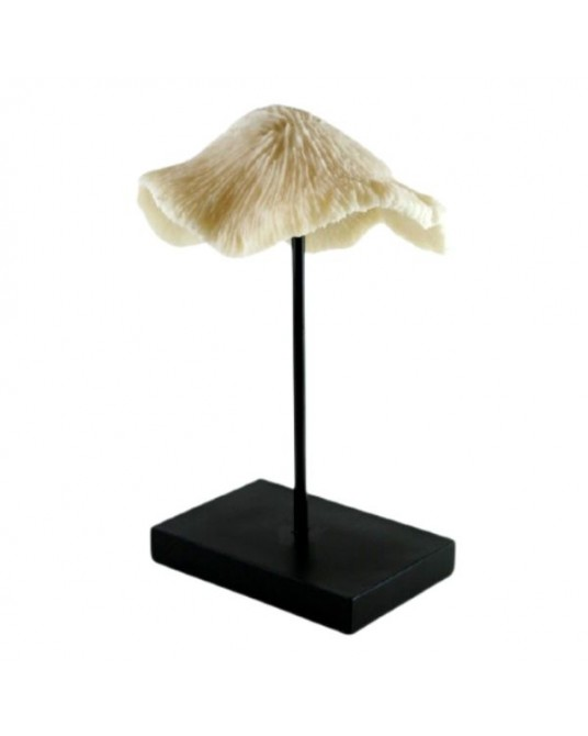 Coral Resin Pedestal